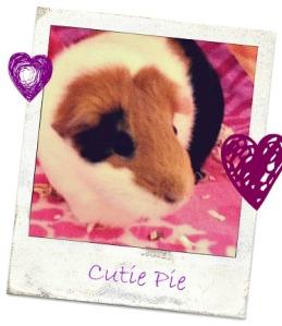 Cutie Pie polaroid
