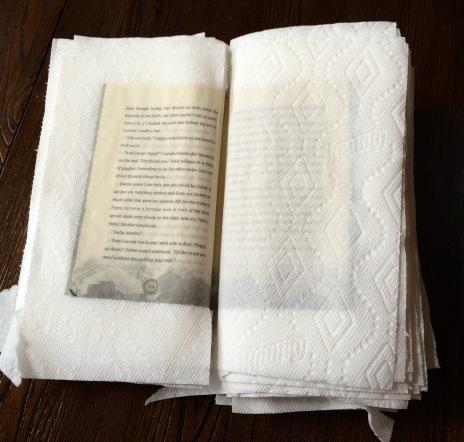 Wet book
